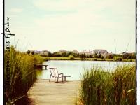 Lac - Bussy Saint Georges - © Marie BIEBER - 2013