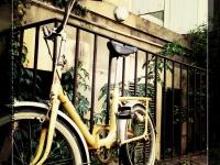 Vélo vintage - Angers - © Marie BIEBER - 2012