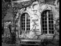 Jardin des Plantes - Angers - © Marie BIEBER - 2012