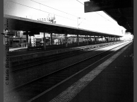 Gare Angers Saint Laud - Angers - © Marie BIEBER - 2013
