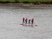 Octobre Rose 2019 : Paddle - Angers - © Marie BIEBER - 2019