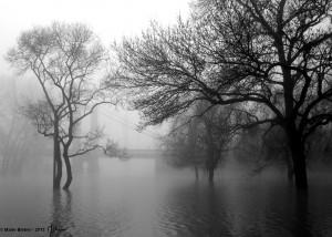 Dans la brume, le pont - Bouchemaine - © Marie BIEBER - 2013